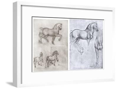 Horses, C1490-1510-Leonardo da Vinci-Framed Premium Giclee Print