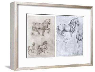 Horses, C1490-1510-Leonardo da Vinci-Framed Giclee Print