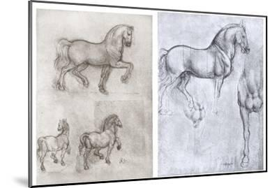 Horses, C1490-1510-Leonardo da Vinci-Mounted Giclee Print