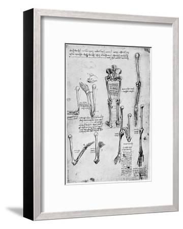 Study of Human Bones, Late 15th or 16th Century-Leonardo da Vinci-Framed Giclee Print