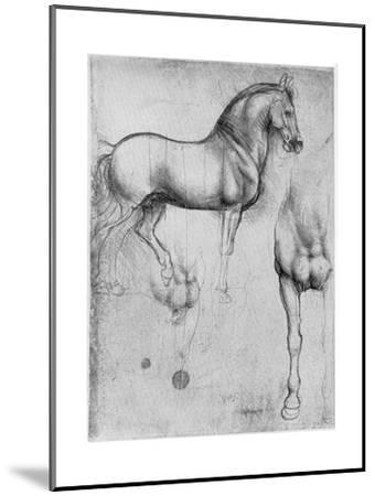 Studies of Horses, C1490-Leonardo da Vinci-Mounted Premium Giclee Print