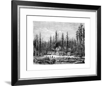 Giant Sequoia Forest, California, 19th Century-Paul Huet-Framed Giclee Print