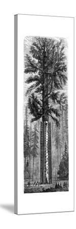 Yosemite National Park, California, 19th Century-Paul Huet-Stretched Canvas Print