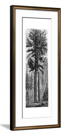 Yosemite National Park, California, 19th Century-Paul Huet-Framed Giclee Print