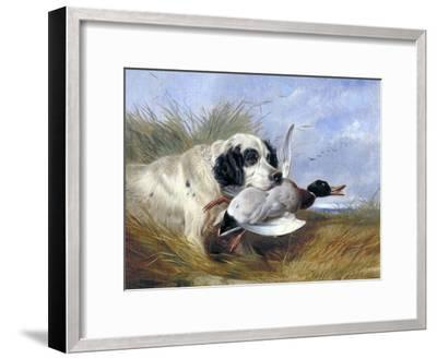 Dog with Wild Duck, 19th Century-Richard Ansdell-Framed Giclee Print