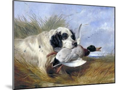 Dog with Wild Duck, 19th Century-Richard Ansdell-Mounted Giclee Print