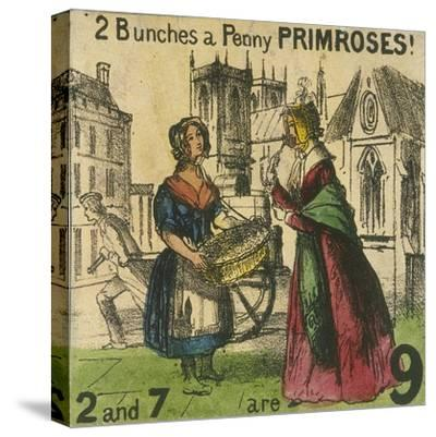2 Bunches a Penny Primroses!, Cries of London, C1840-TH Jones-Stretched Canvas Print