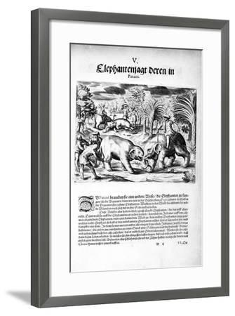 Elephants Fighting, 1606-Theodore de Bry-Framed Giclee Print
