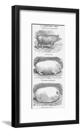 A Darwinian Idea, 1865-TW Woods-Framed Giclee Print