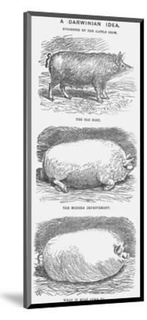 A Darwinian Idea, 1865-TW Woods-Mounted Giclee Print
