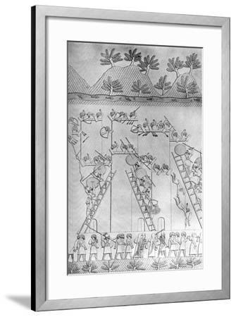 A City Taken by Assault by the Assyrians, C1853, (C1900-192)-Austen Henry Layard-Framed Giclee Print
