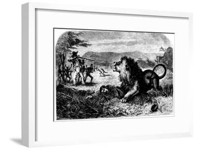David Livingstone, Saved from a Lion by Mebalwe, a Native Schoolmaster, 1857--Framed Giclee Print