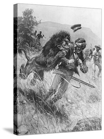 Scottish Missionary and Explorer David Livingstone Being Attacked by a Lion, Africa, 19th Century--Stretched Canvas Print