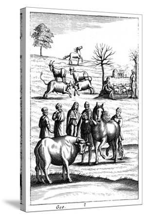 Sheep, Cattle, Horses and Goats, 18th Century--Stretched Canvas Print