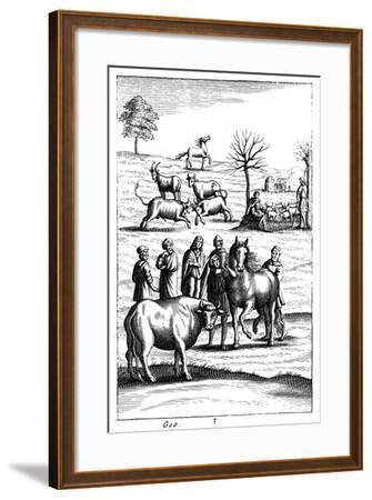 Sheep, Cattle, Horses and Goats, 18th Century--Framed Giclee Print