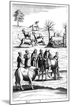 Sheep, Cattle, Horses and Goats, 18th Century--Mounted Giclee Print