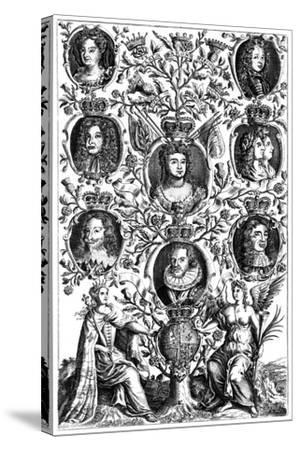 Queen Anne's (1665-171) Family Tree--Stretched Canvas Print
