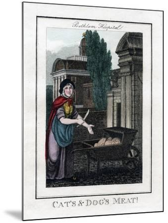 Cat's and Dog's Meat!, Bethlem Hospital, London, 1805--Mounted Giclee Print