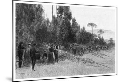 Hop Picking Near Bairnsdale, Australia, 1886--Mounted Giclee Print