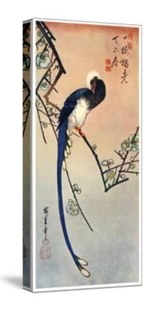 Long Tailed Blue Bird on Branch of Plum Tree in Blossom, 19th Century-Ando Hiroshige-Stretched Canvas Print