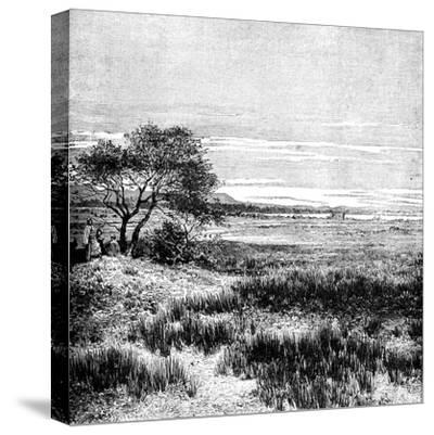 Agha Valley, Central Pampa, Argentina, 1895--Stretched Canvas Print