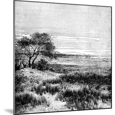 Agha Valley, Central Pampa, Argentina, 1895--Mounted Giclee Print