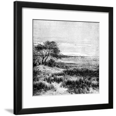 Agha Valley, Central Pampa, Argentina, 1895--Framed Giclee Print