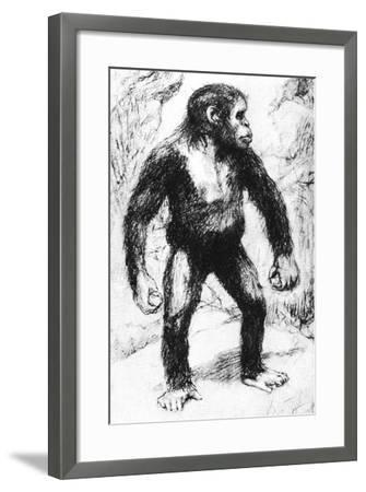 Taungs Ape-Man--Framed Giclee Print