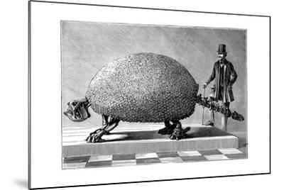 Fossil of a Giant Armadillo from South America, C1890--Mounted Giclee Print
