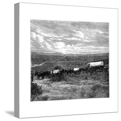 Pretoria, South Africa, C1890--Stretched Canvas Print