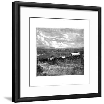 Pretoria, South Africa, C1890--Framed Giclee Print