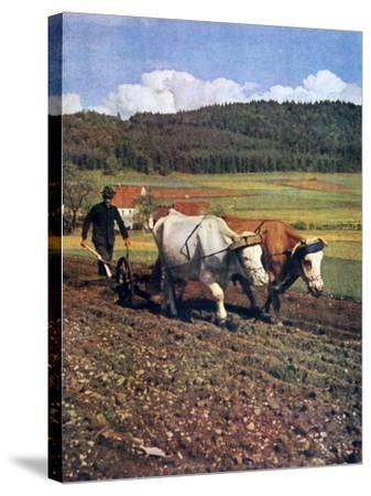 Tilling, Germany, 1943--Stretched Canvas Print