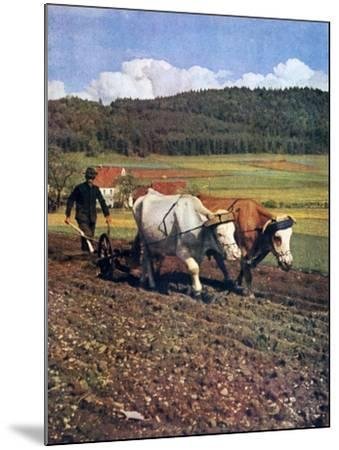 Tilling, Germany, 1943--Mounted Giclee Print