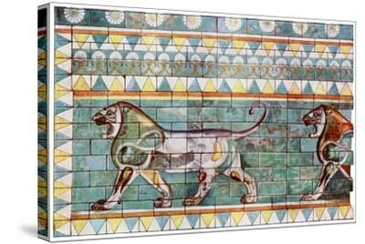 The Lion Frieze from King Darius' Winter Palace at Susa, Iran, 1933-1934--Stretched Canvas Print