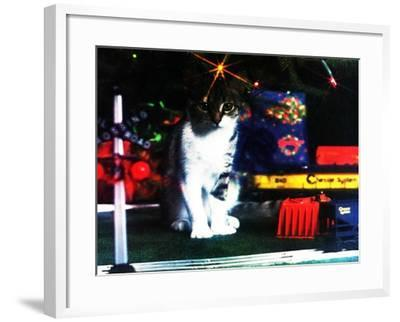 Chessie under the Christmas Tree--Framed Giclee Print