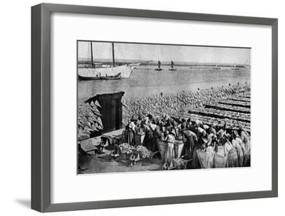Quantities of Codfish Drying in the Sun at Aveiro by the Mouth of the Vouga, Portugal, C1930S-AW Cutler-Framed Giclee Print