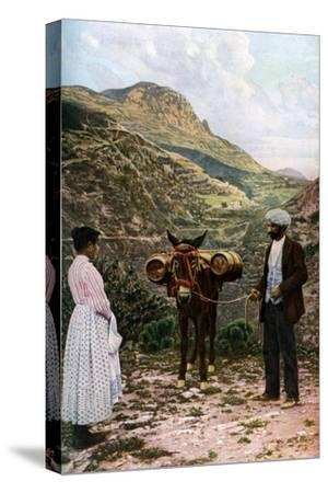 Mule with Water Kegs, Sicily, Italy, C1923-AW Cutler-Stretched Canvas Print