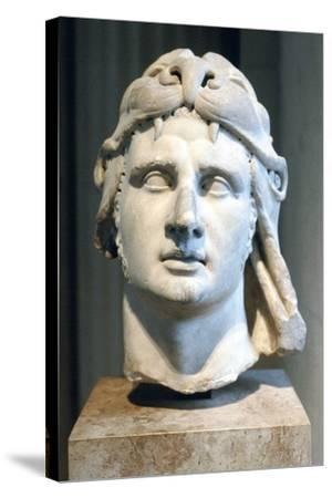 Portrait Bust of Alexander the Great--Stretched Canvas Print