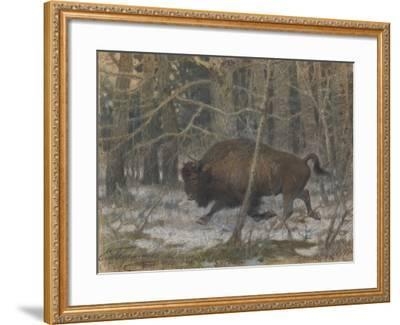 The Wood Bison-Evgeny Alexandrovich Tichmenev-Framed Giclee Print