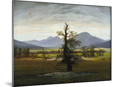 Solitary Tree (Village Landscape in Morning Light), 1822-Caspar David Friedrich-Mounted Giclee Print