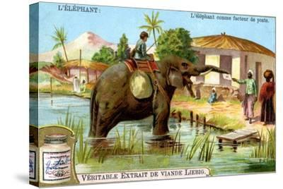 The Elephant as Postman, C1900--Stretched Canvas Print