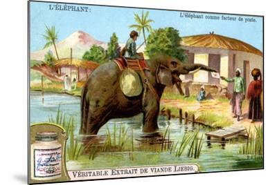 The Elephant as Postman, C1900--Mounted Giclee Print