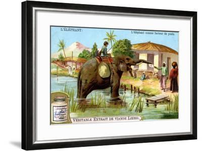 The Elephant as Postman, C1900--Framed Giclee Print