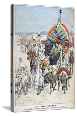 The Large Annual Caravans Heading North, Gourara, Algeria, 1903--Stretched Canvas Print