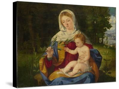 The Virgin and Child with a Shoot of Olive, Ca 1515-Andrea Previtali-Stretched Canvas Print