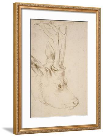 Head of a Roebuck, 1503-Albrecht D?rer-Framed Giclee Print