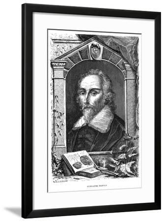 William Harvey (1578-165) English Physician, C17th Century--Framed Giclee Print