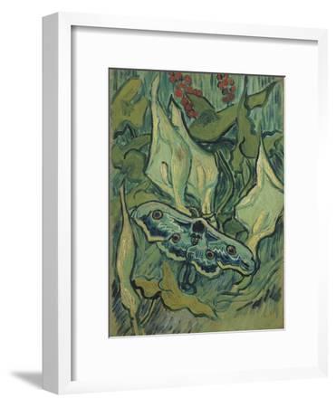 Green Peacock Moth (The Emperor Mot), 1889-Vincent van Gogh-Framed Giclee Print