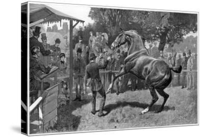 Sale of Hunters Raising and Objection, 1885--Stretched Canvas Print