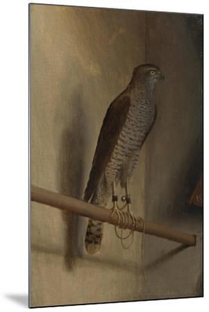 A Sparrowhawk, 1510S-Jacopo De' Barbari-Mounted Giclee Print